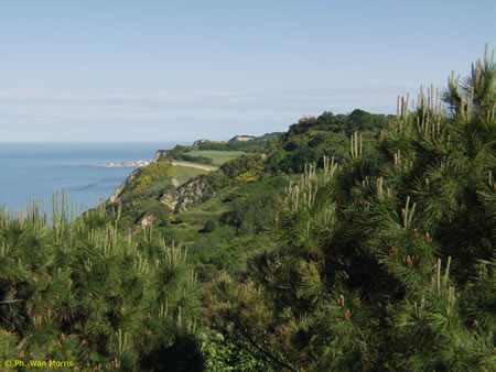 Parco San Bartolo Gabicce - La Panoramica