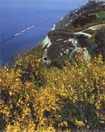 Panorama San Bartolo
